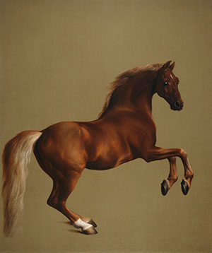 (Photo: George Stubbs, Whistlejacket, c.1762. National Gallery, London)